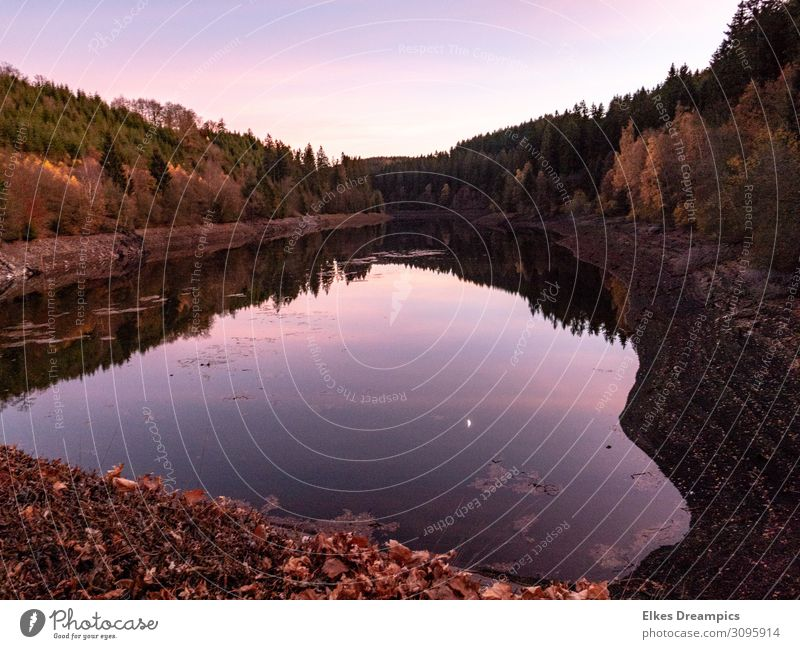 water heart Nature Landscape Elements Earth Water Sky Autumn Beautiful weather Natural Brown Pink River dam Colour photo Exterior shot Twilight Light Reflection