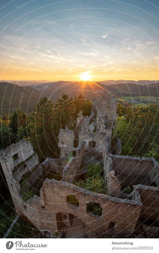 Castle ruin Prandegg Environment Nature Landscape Plant Sky Horizon Sun Sunrise Sunset Sunlight Summer Weather Beautiful weather Tree Field Forest Hill Austria