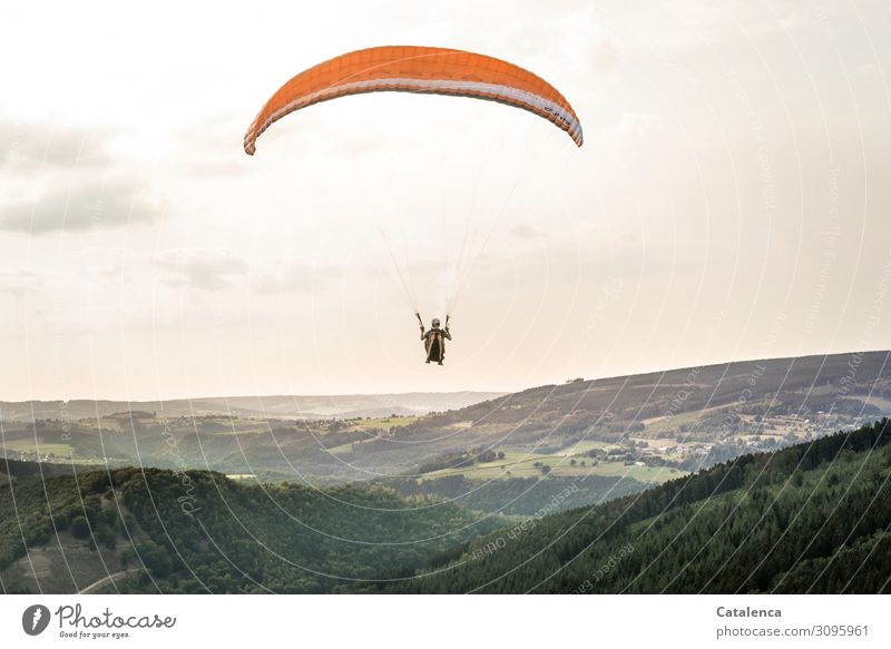 glide Leisure and hobbies Sports Paragliding Androgynous 1 Human being Nature Landscape Sky Clouds Horizon Summer Beautiful weather Tree Grass Bushes Meadow
