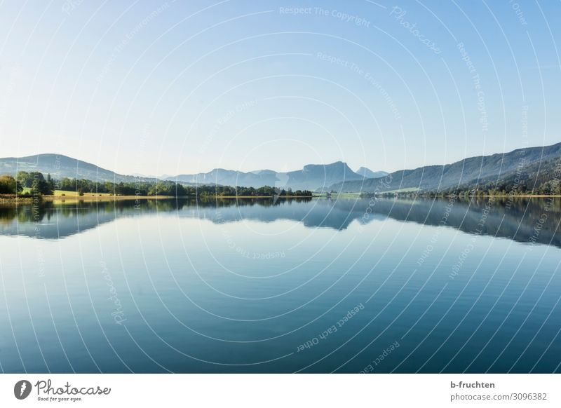 Landscape in the Salzkammergut Harmonious Relaxation Vacation & Travel Mountain Environment Nature Water Summer Autumn Beautiful weather Forest Alps Lakeside