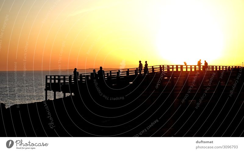 silhouettes Group Environment Nature Landscape Elements Water Sunrise Sunset Sunlight Summer Beautiful weather Warmth Coast Ocean Wood Observe Discover