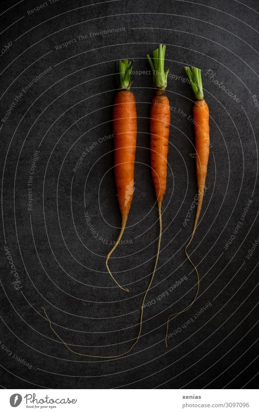 Three carrots Food Vegetable Carrot Organic produce Vegetarian diet Diet Fresh Healthy Green Orange Black 3 Food photograph Colour photo Studio shot Deserted