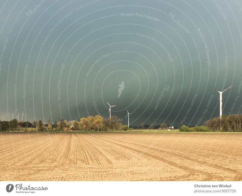 approaching thunderstorm over a grain field with wind turbines Environment Nature Landscape Sky Clouds Storm clouds Horizon Weather Tree Pinwheel Threat Dark