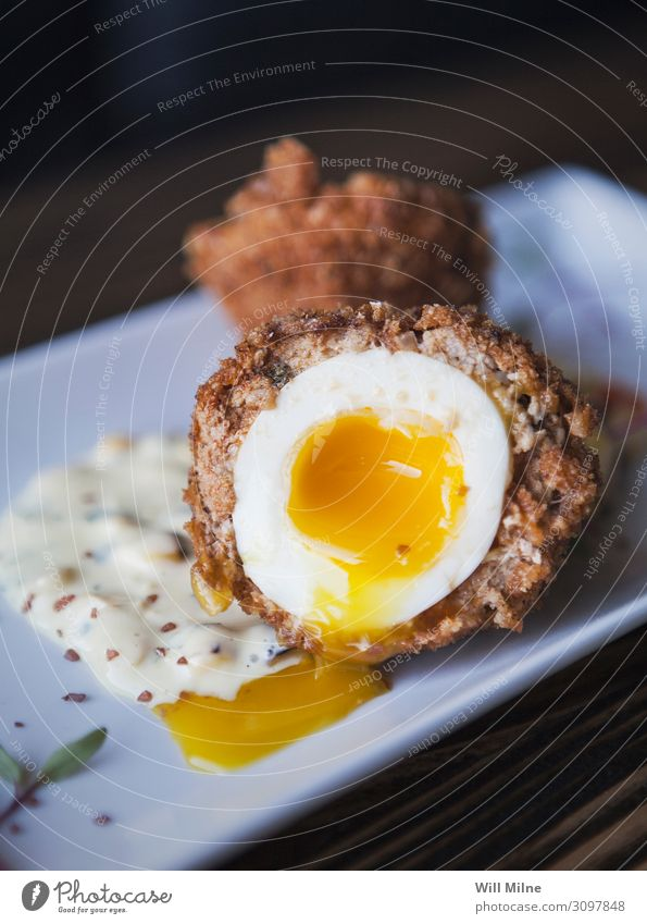 Scotch Egg with Runny Yolk Scotsman Food Dish Food photograph runny Frying Sausage Appetizer Meal