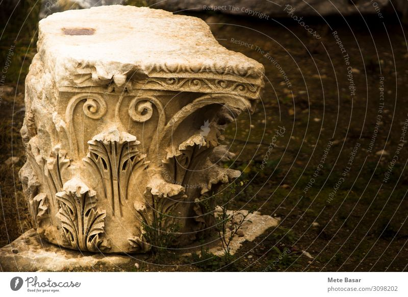 "Close up of a Corinthian style column head on ground. Art Architecture Earth Fern ""Iznik Turkey"" Nikea Asia Ruin Column Earthquake Stone Ornament Protection"