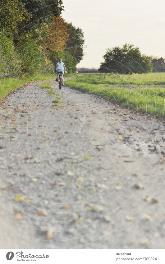autumn wheeler Child Bicycle Cycling Cycling tour Autumn Summer Exterior shot Nature Air Footpath Leaf Field Meadow Tree Gravel path Perspective