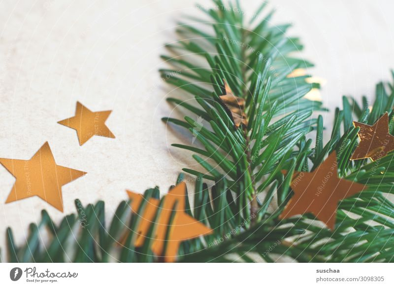 christmas deco stuff Christmas & Advent Fir branch Fir needle Star (Symbol) stars Christmas decoration Decoration Card Neutral Background