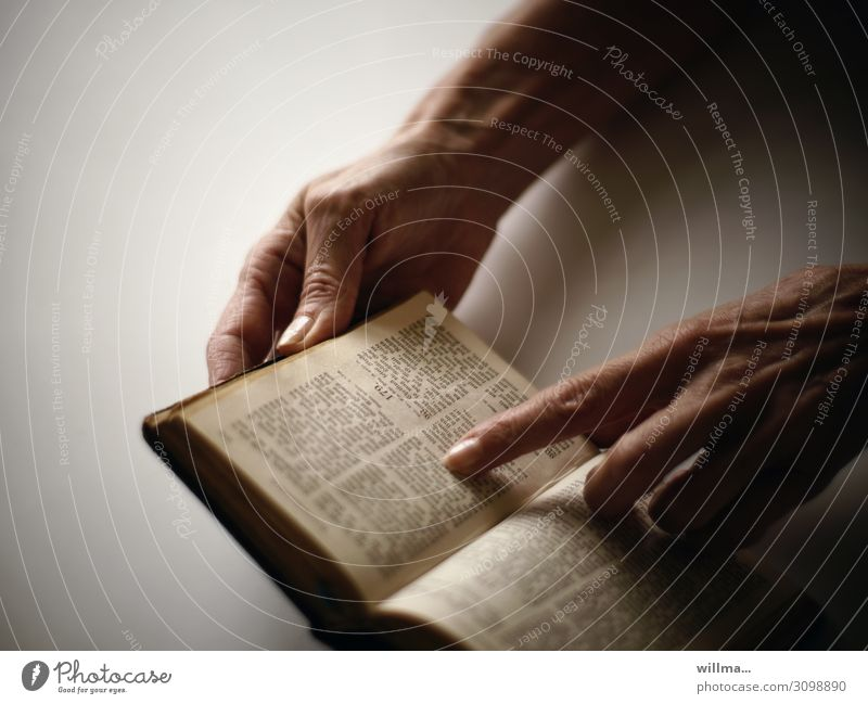 Finger of a hand rests on a passage of the Bible Reading Book History of the holy script Hand Forefinger God Faith & Religion text passage chapters hands