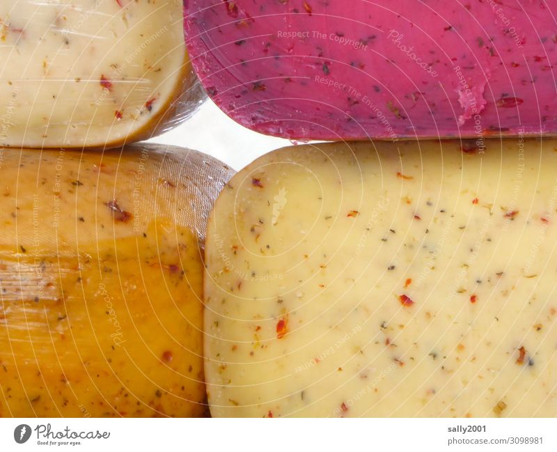 All cheese... Food Cheese Nutrition Firm Multicoloured To enjoy Difference Market stall Market day Cheese market Cheese body Herbs and spices Mature Delicious