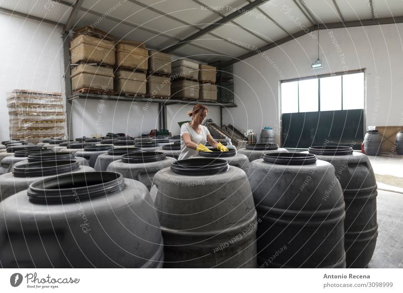 barrels Fruit Work and employment Workplace Factory Industry Business Company Human being Woman Adults Plant Container Gloves Old Select Stand Fresh Protection