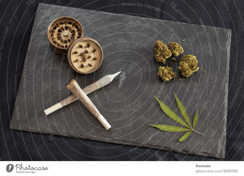 Marijuana joints, cannabis buds and leaf, grinder on black tray Vacation & Travel Nature Old Plant Green Relaxation Leaf Joy Dark Black Healthy Lifestyle