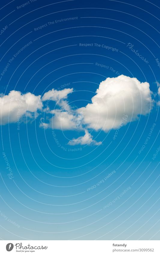 Sky Nature Summer Blue White Landscape Clouds Background picture Environment Natural Copy Space Weather Air Idyll Beautiful weather Individual