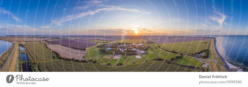 Aerial view of Fehmarn Landscape Summer Field North Sea Baltic Sea Germany Europe Beautiful Love Love of animals Contentment Coast Farm Agriculture Sunset