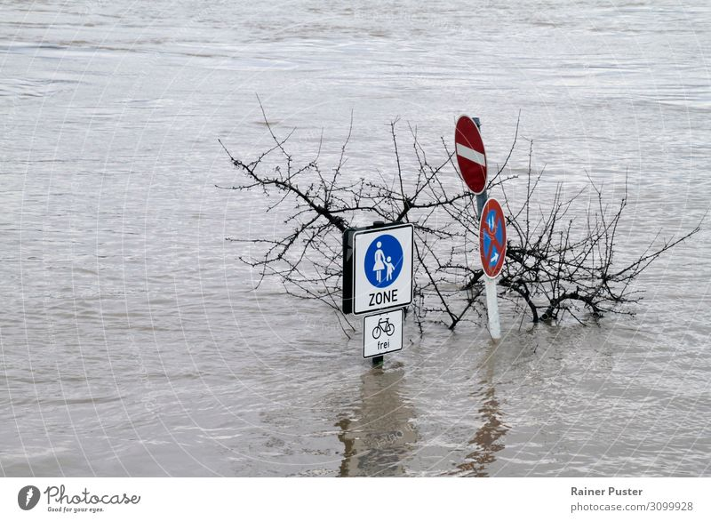 Climate change - Flooded pedestrian zone Nature Water Bad weather Gale River Rhine Destruction Deluge Inundated Go under Torrents of water Colour photo