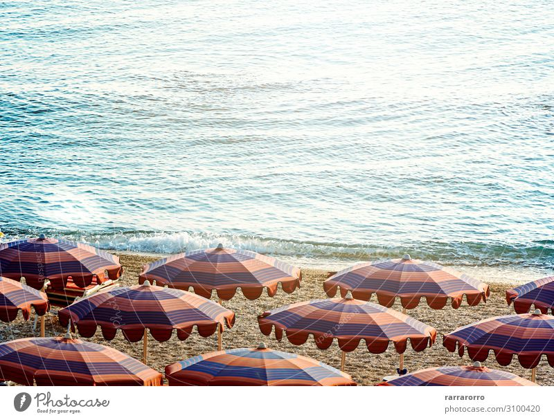 Sun umbrellas open early in the morning on a beach by the sea Luxury Beautiful Relaxation Leisure and hobbies Vacation & Travel Tourism Summer Sunbathing Beach