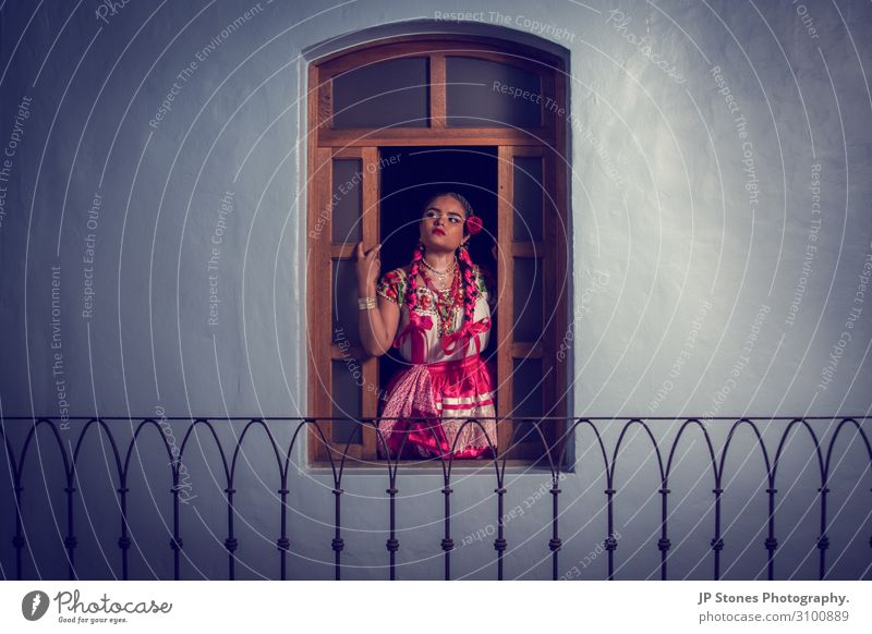 Beautiful young lady stares out of window. Feminine Young woman Youth (Young adults) 1 Human being 18 - 30 years Adults House (Residential Structure)