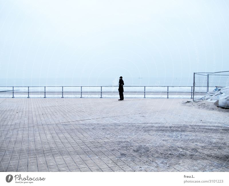 Ostend Vacation & Travel Tourism Trip Beach Ocean Winter Snow Man Adults 1 Human being 45 - 60 years North Sea Coat Hat Looking Serene Loneliness Oostende