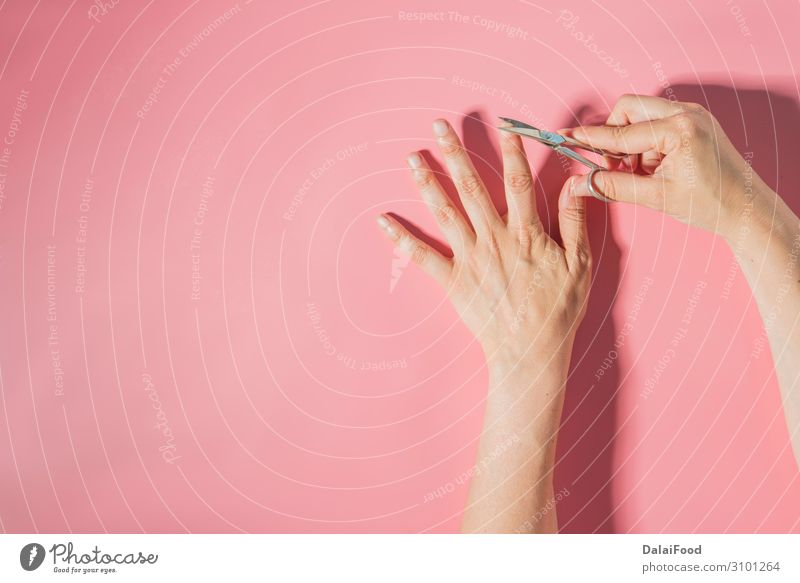 Nail cutter macro detail pink background Woman Human being Man Beautiful White Hand Adults Body Metal Glittering Skin Fingers Clean Beauty Photography Steel