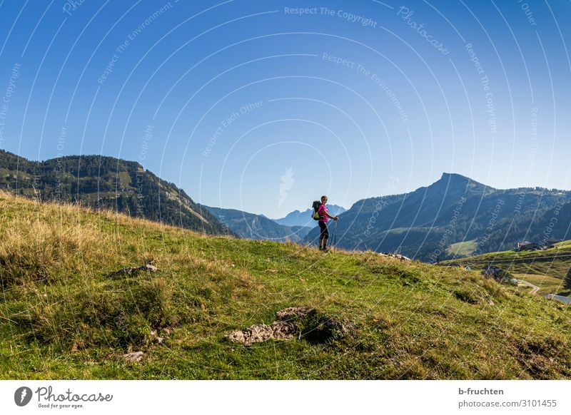 Woman Human being Nature Summer Relaxation Calm Mountain Healthy Adults Autumn Natural Movement Tourism Freedom Hiking