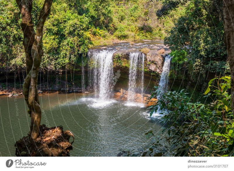 Thamchamp Pee waterfall, Paksong, Laos Beautiful Vacation & Travel Tourism Mountain Environment Nature Plant Tree Forest Virgin forest Rock River Waterfall Drop