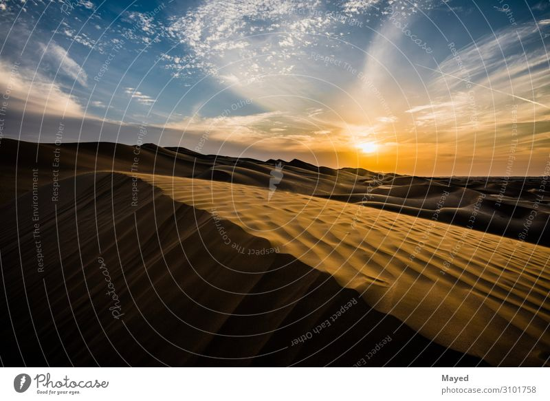 sand dunes Art Painting and drawing (object) Abu Dhabi Dubai Al Ain Desert Dune Sand Contrast United Arab Emirates Gold Friendship Interest Adventure