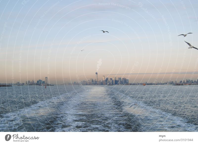 Skyline of Manhattan, Queens and New Jersey with seagulls at dusk New York City Hudson River Seagull Seagulls USA Staten Island Ferry states island Town