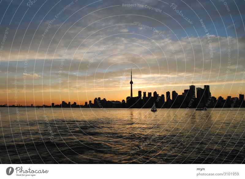 Skyline of Toronto Canada at sunset Skyline silhouette Skyline at night Lake Lake Ontario Sunset High-rise CN Tower Panorama (View) Long shot Silhouette