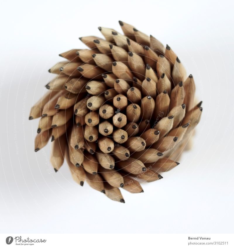 creative strudel Pen Creativity Office Drawing pencil Pencil Whirlpool Movement Spiral Graphite Wood Rotation Above Dynamics Direction Brown Gray Multiple