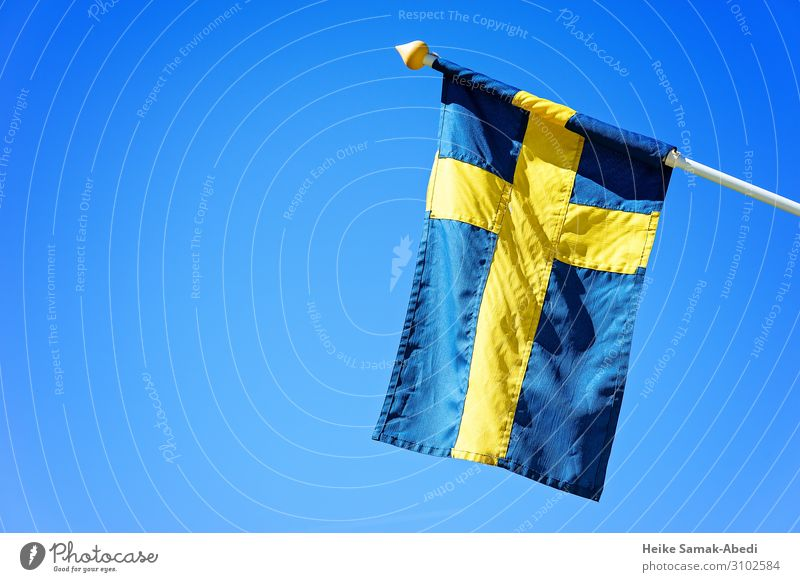 Swedish National Flag Sky Sweden Sign Signs and labeling Blue Yellow Pride Civic pride Home country Patriotism Ensign Colour photo Deserted Copy Space left