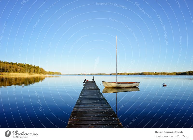 Idyll at Lake Västersjön in Sweden Sailing Nature Landscape Water Sky Coast Lakeside Schonen Skåne Boating trip Sailboat Blue Calm Loneliness Body of water
