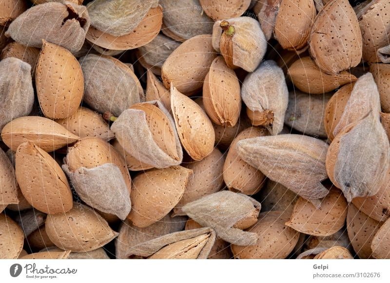 Many freshly picked almonds Fruit Nutrition Eating Vegetarian diet Diet Table Group Autumn Wood Fresh Natural Brown Almond food Shell Ingredients nut healthy