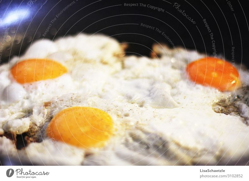 Fried eggs in the pan Fried egg sunny-side up Arrow Eating Egg Breakfast Food Nutrition Protein Meal Close-up Pan Cholesterol Frying Fresh Yellow Healthy