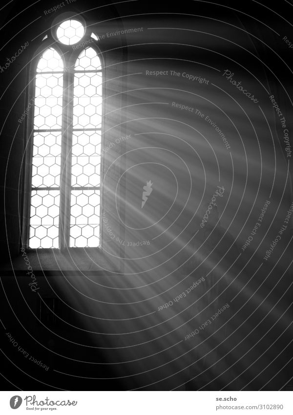 enlightenment Church Moody Loneliness Window Think Awareness Black & white photo Interior shot Deserted Copy Space right Copy Space bottom Neutral Background