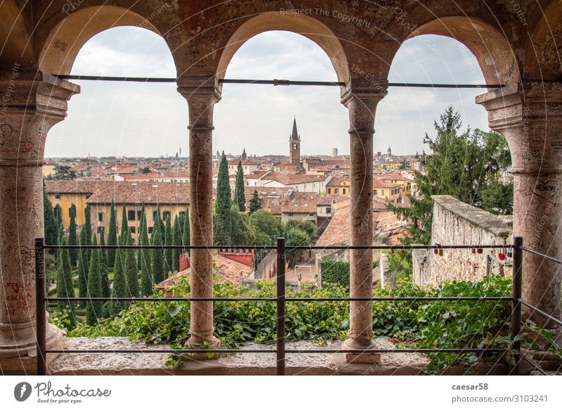 View over Verona, Italy Vacation & Travel Tourism Trip Far-off places City trip Europe House (Residential Structure) Palace Architecture Tourist Attraction