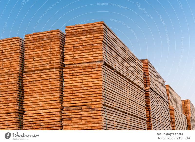 Wooden boards stacks outdoor. Lumber industry. Timber stock Factory Economy Business Saw Environment Tree Destruction Alternative Blue sky Carpenter carpentry