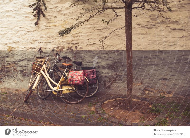 Two old bicycles with colourful bags on an old wall Leisure and hobbies Trip Cycling tour Summer Summer vacation Bicycle Relaxation To enjoy Sports Cool (slang)