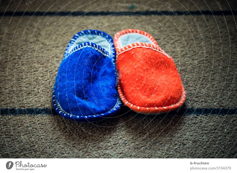 Together we are a pair Harmonious Couple Footwear Slippers Sign Utilize Communicate Blue Red Sympathy Friendship Fairness Equal Attachment In pairs Masculine