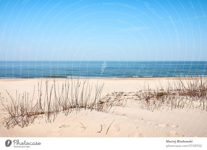 Photo of a sea coast sand dune on a sunny day Vacation & Travel Far-off places Freedom Camping Cycling tour Summer Beach Ocean Island Nature Landscape Sand Sky
