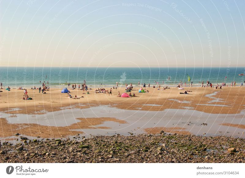 People at low tide on the beach Crowd of people Cloudless sky Sunlight Summer Beautiful weather Coast Beach North Sea Ocean Swimming & Bathing Relaxation Hot