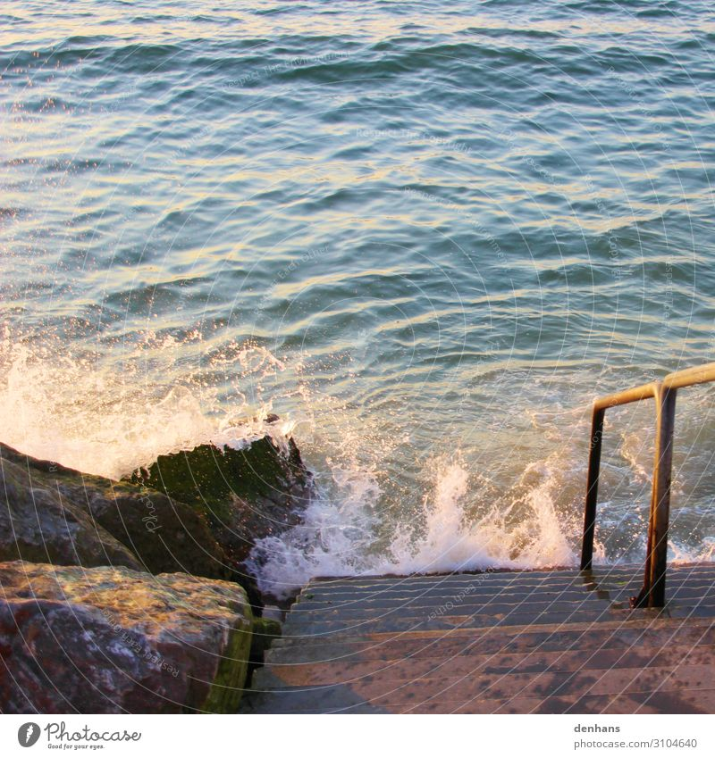 Stairs to the sea Vacation & Travel Summer Ocean Environment Nature Water Climate change Waves Coast North Sea Relaxation Threat Maritime Wet Blue Brown