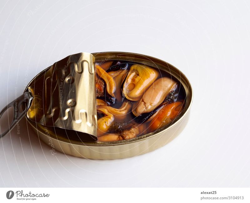 Natural mussels canned on white background Seafood Nutrition Dinner Container Mussel Tin Metal Steel Glittering White Canned Conserve Gourmet healthy