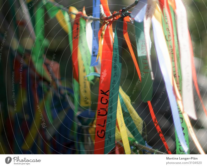 I wish myself luck Characters String Expectation Belief Religion and faith Happy Desire Colour photo Multicoloured Exterior shot Back-light