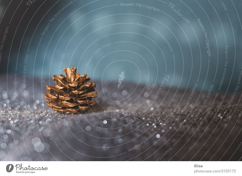 A shiny gold fir cone on a silver glittering background. Winter Christmas & Advent Glittering Gold Fir cone Christmas decoration Snowscape Fir tree Blue Silver
