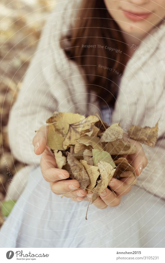 autumn love amass Nature Autumn Woman Hand Leaf Exterior shot Forest White Brown Green To hold on Long-haired Brunette Cardigan Cozy