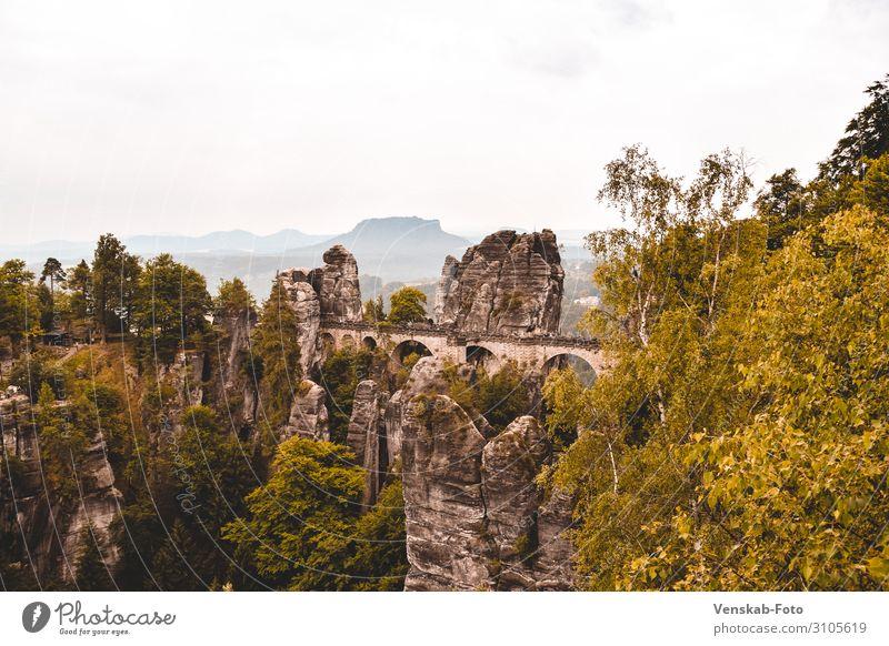 Saxon Switzerland Bastei Vacation & Travel Tourism Trip Far-off places Freedom Sightseeing Mountain Hiking Architecture Nature Landscape Tree Rock Bridge