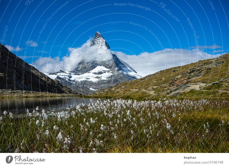 Riffel lake with Matterhorn Environment Nature Landscape Plant Sky Summer Meadow Rock Alps Mountain Peak Snowcapped peak Exceptional Gigantic Large Point Strong
