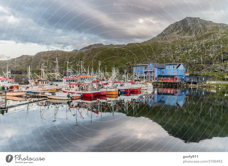 fishing boats Vacation & Travel Tourism Trip Adventure Far-off places Freedom Expedition Nature Landscape Water Sky Clouds Hill Fjord Norway Fishing village