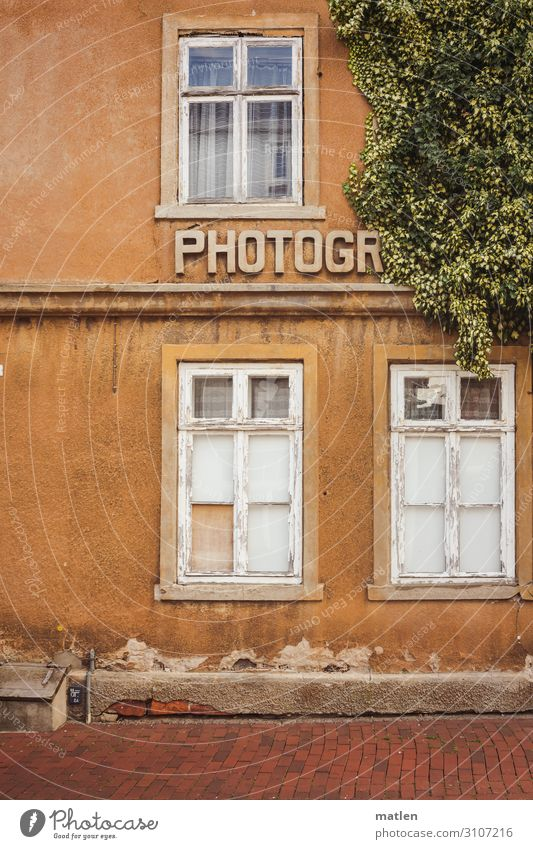 photograhic Artist Town Old town Deserted House (Residential Structure) Wall (barrier) Wall (building) Window Authentic Brown Green Red White Ivy Photographer