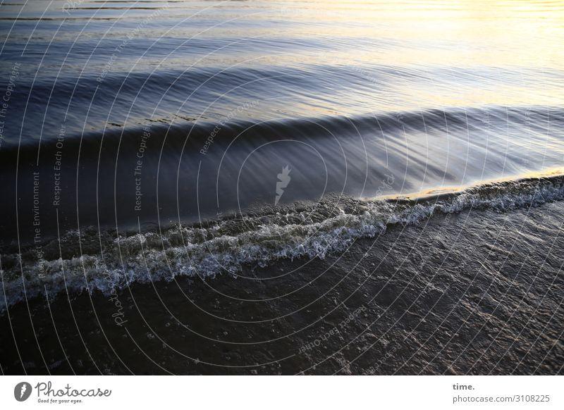 accumulating drain Environment Nature Sand Water Waves Coast River bank Beach Line Drop Dark Power Romance Life Endurance Wanderlust Esthetic Experience