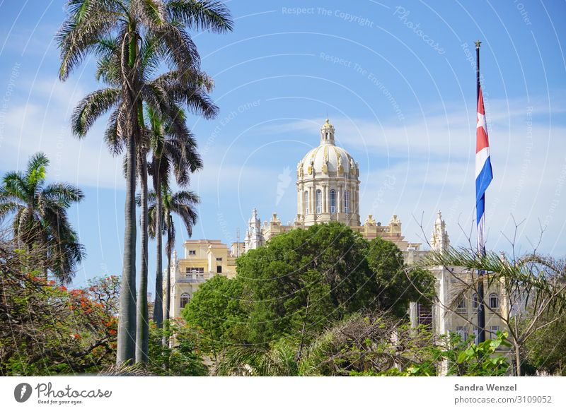 Havana Cuba Americas Town Capital city Port City Old town Skyline Deserted Tourist Attraction Landmark Famousness Exotic Friendliness Travel photography